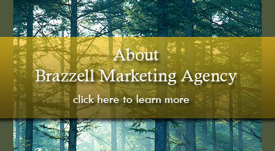 About Brazzell Marketing Agency specializing in home health care marketing and physical therapy marketing
